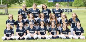 hs-softball-team